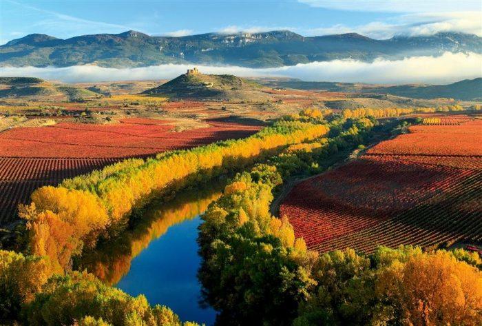Abogado experto en negligencias médicas en La Rioja